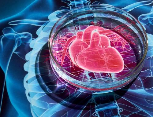 Καρδιαγγειακά νοσήματα και γονιδιακός έλεγχος
