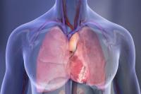 καρδιομεταβολική