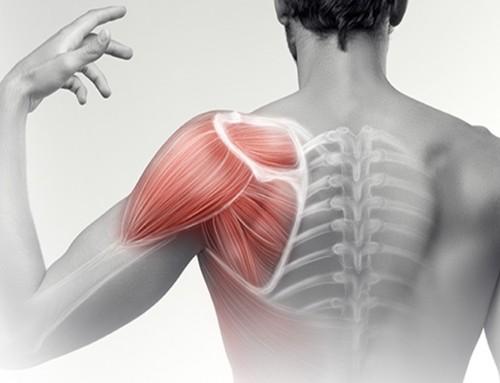 Πόνος στον ώμο: Αίτια και θεραπευτικές δυνατότητες