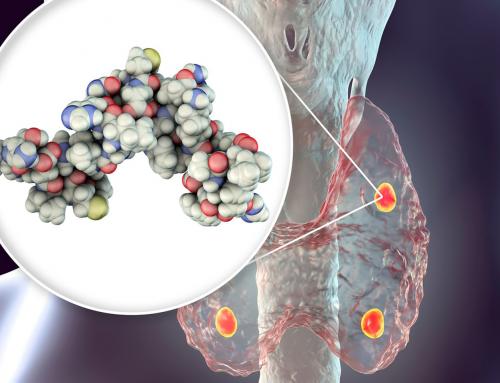 Παραθορμόνη: Μπορεί να προκαλέσει καρδιαγγειακά προβλήματα;